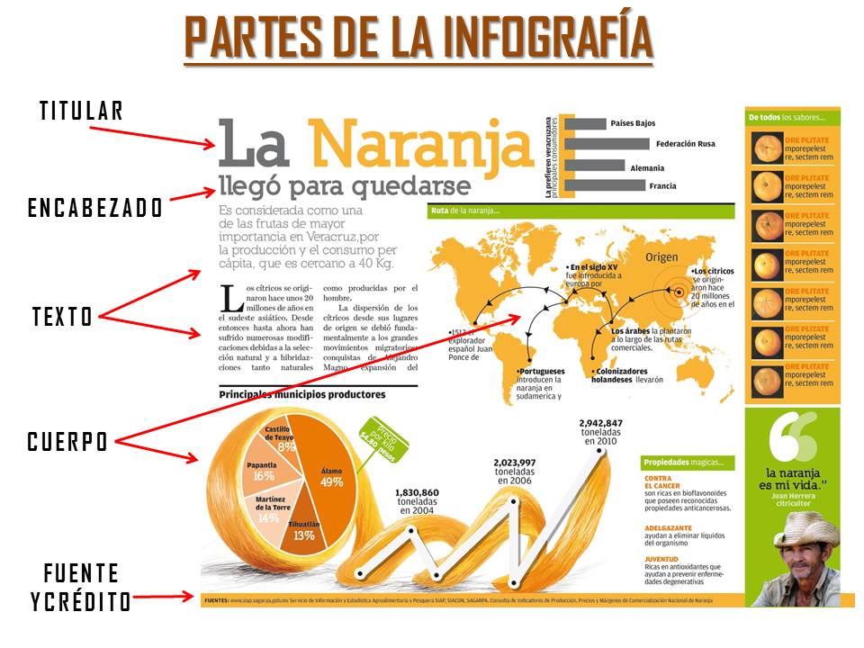 partes-de-la-infografía