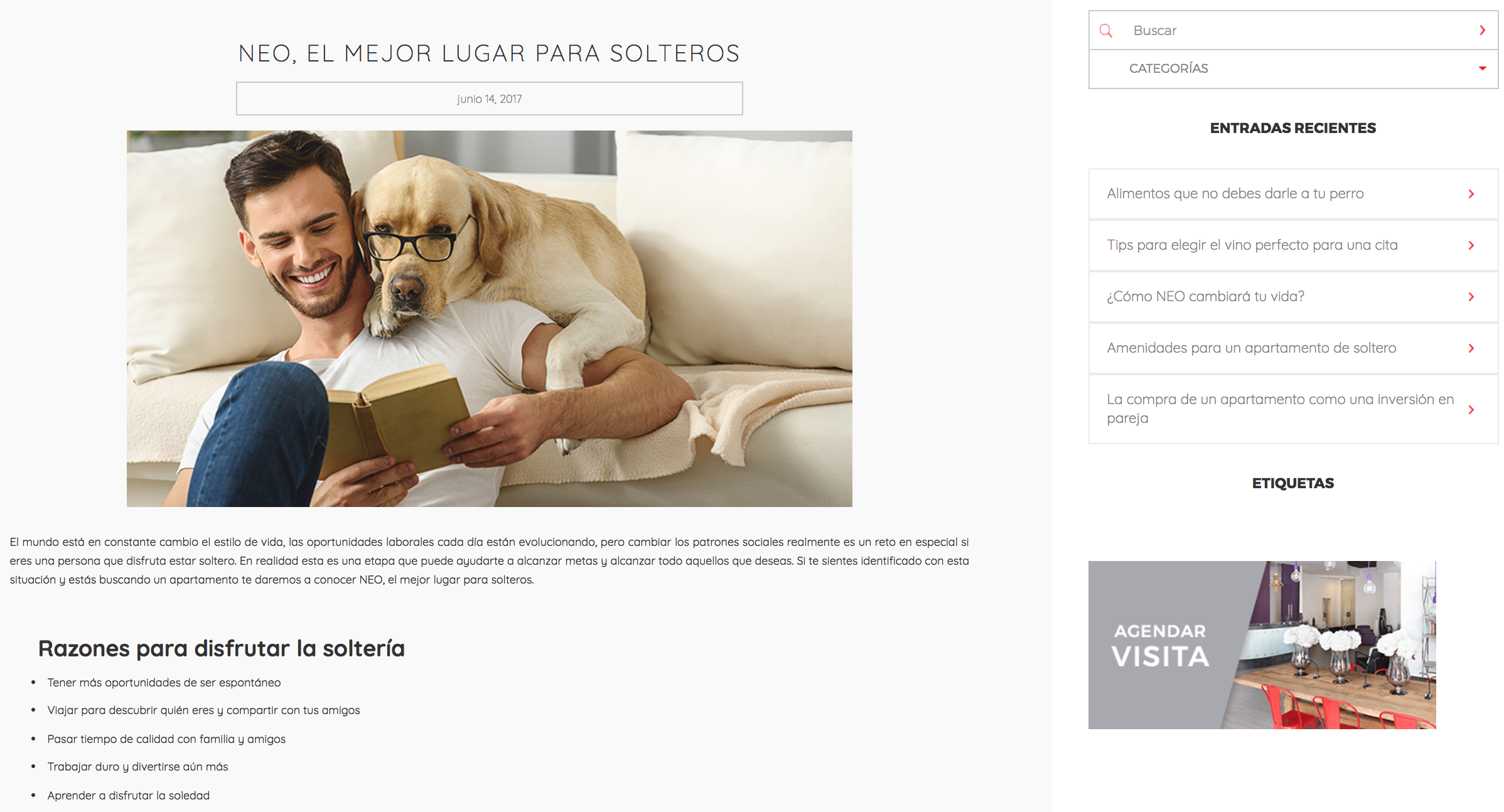 blog solteros.png